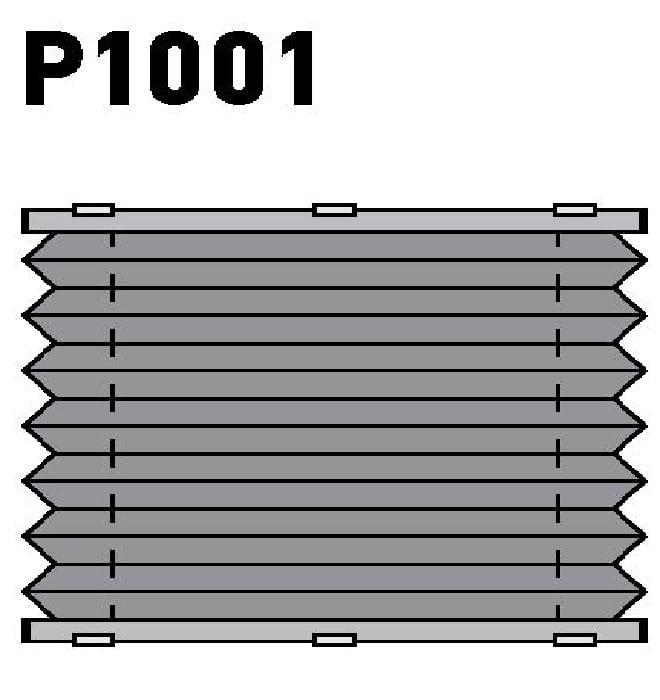 Модель P1001