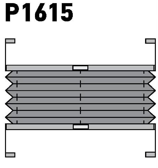 Модель P1615