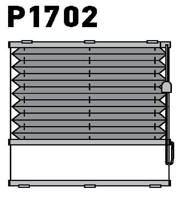 Модель P1702