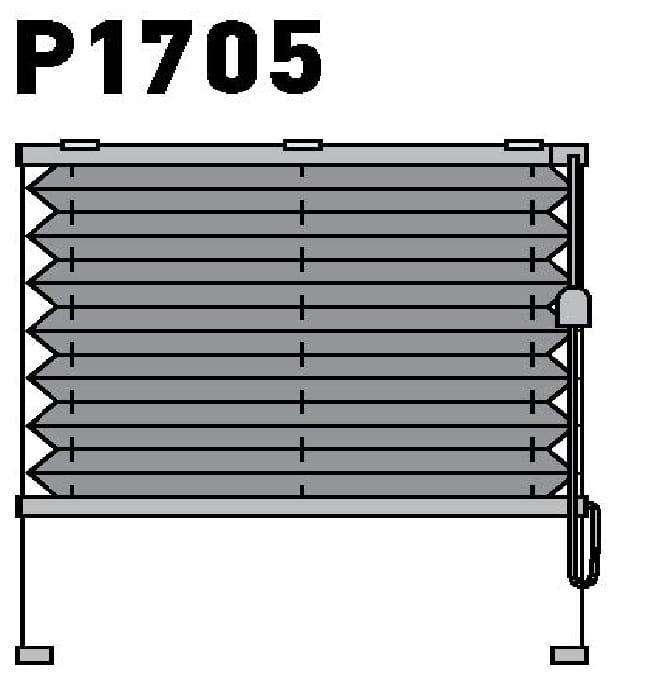 Модель P1705