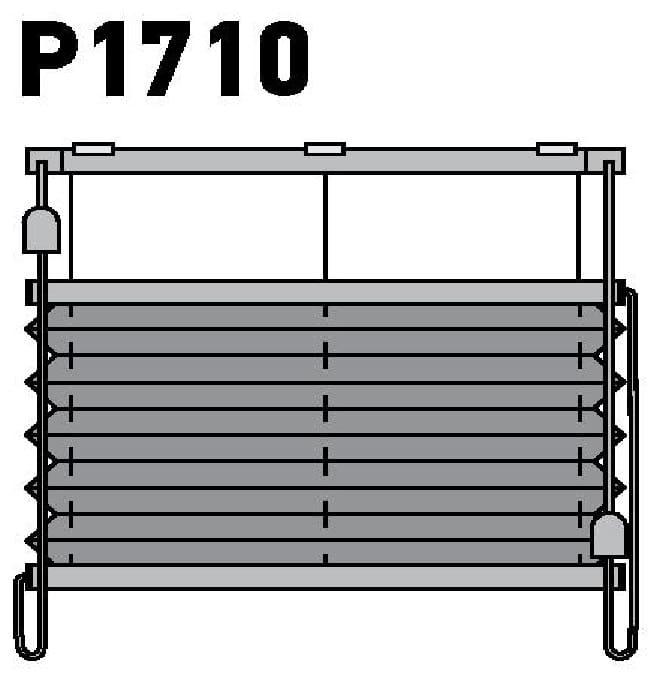 Модель P1710