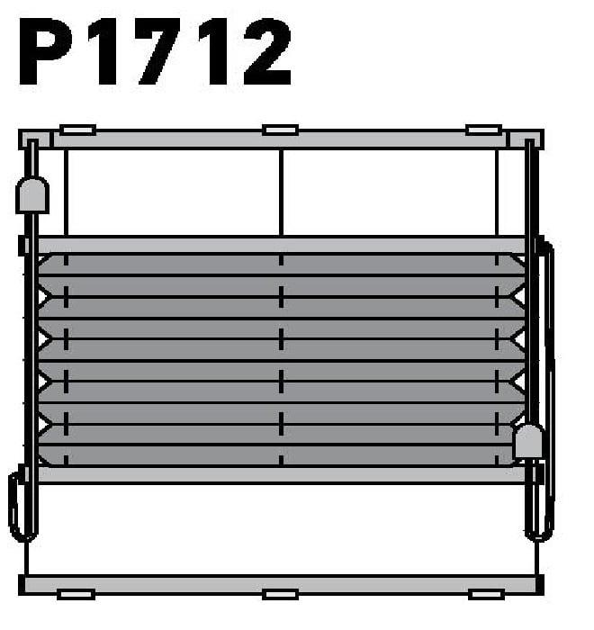 Модель P1712