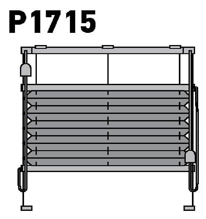 Модель P1715