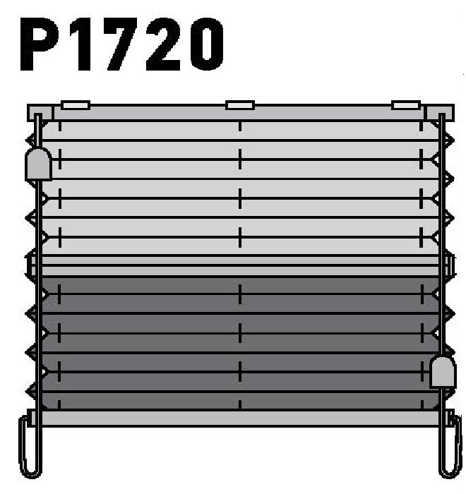 Модель P1720