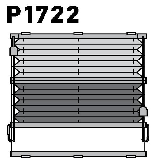 Модель P1722