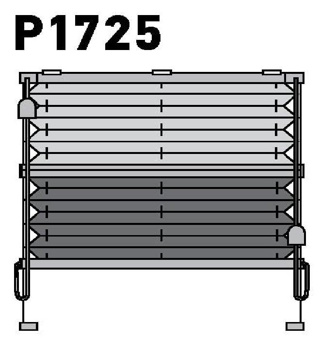 Модель P1725
