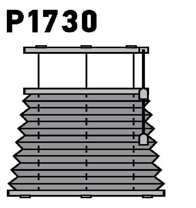 Модель P1730