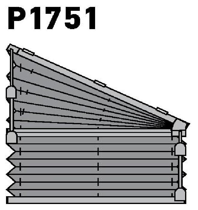 Модель P1751