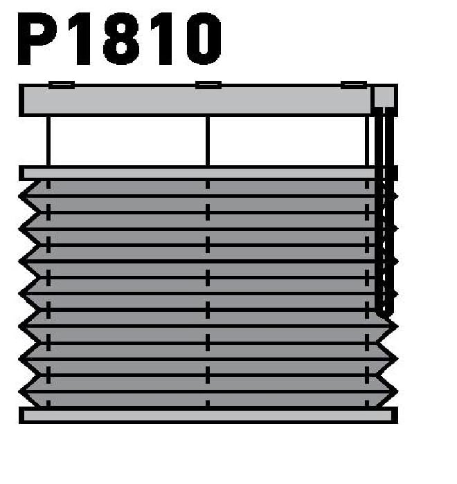 Модель P1810