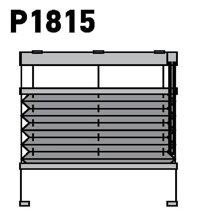 Модель P1815