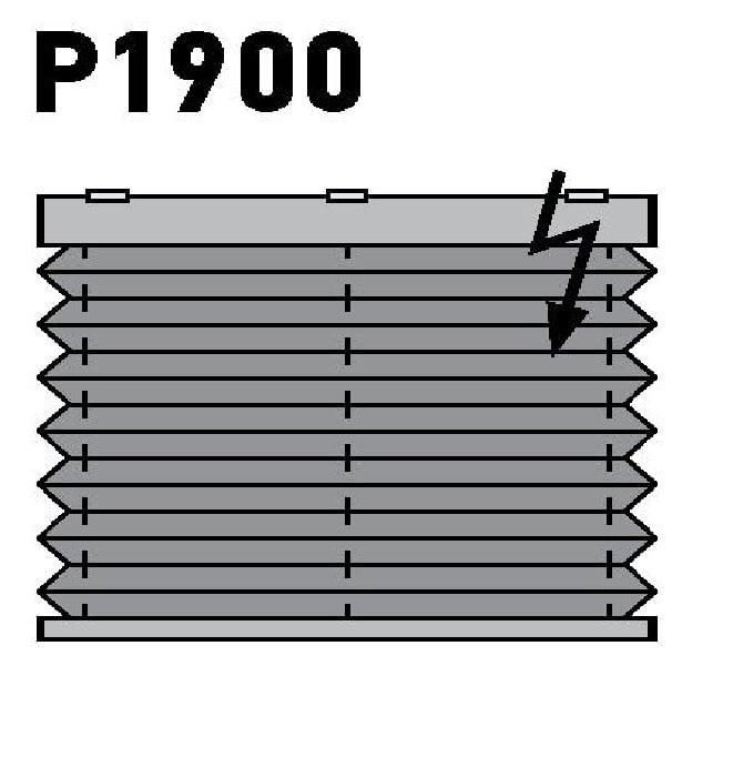 Модель P1900