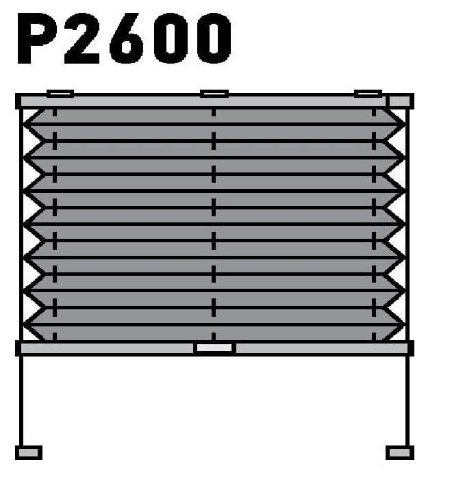 Модель P2600