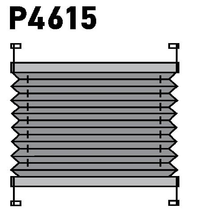Модель P4615