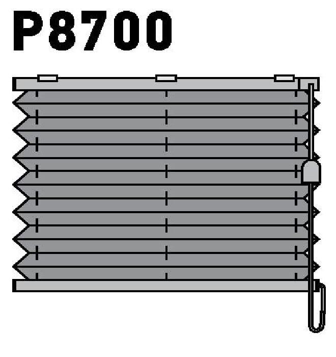 Модель P8700