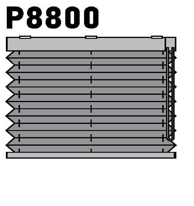 Модель P8800