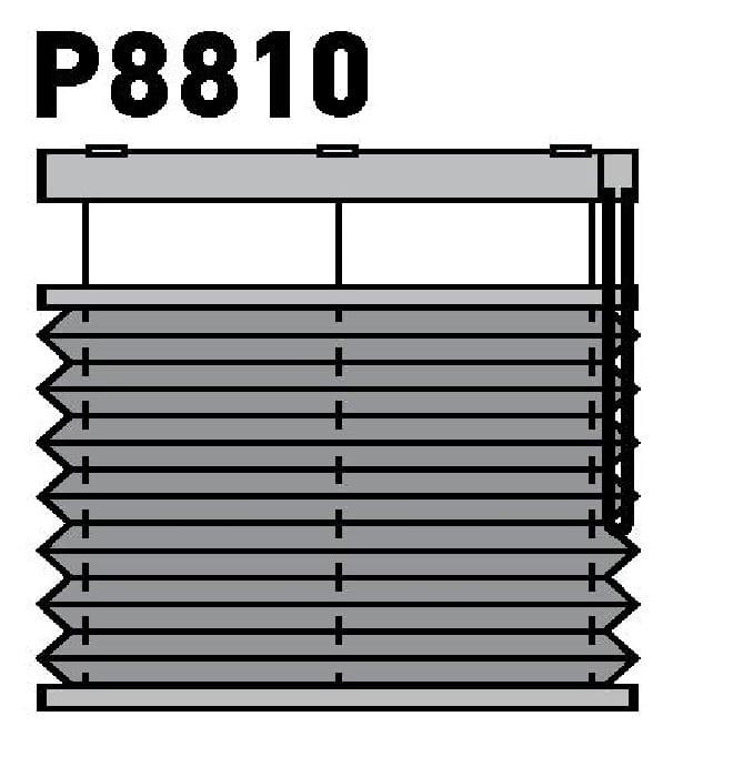 Модель P8810