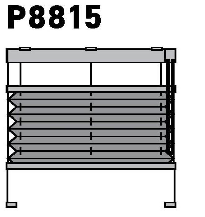 Модель P8815
