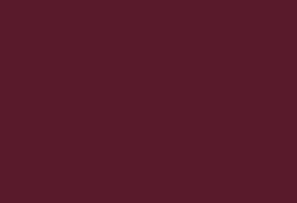 RAL 3005 бордовый